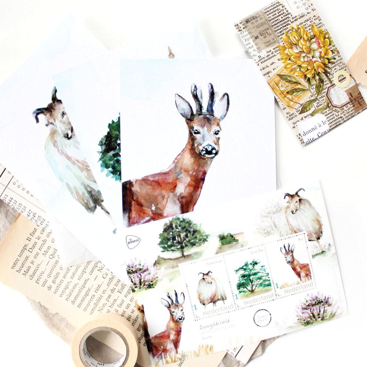 Botanische postzegels: Dwingelderveld